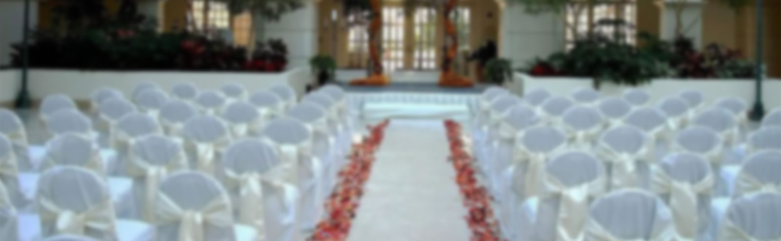 Chair Cover Promotion